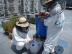 『新横浜 Honey Field Project 緑とミツバチで街の創造力をひきだすプロジェクト』